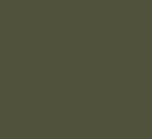 peinture-vert-gris-sauge